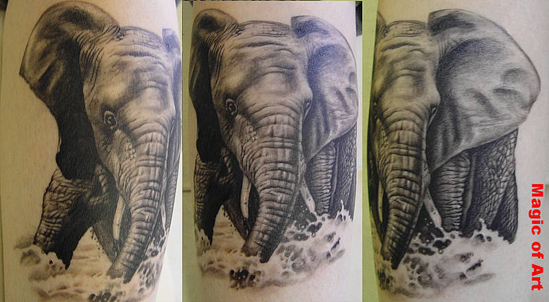 Elephant in water tattoo design