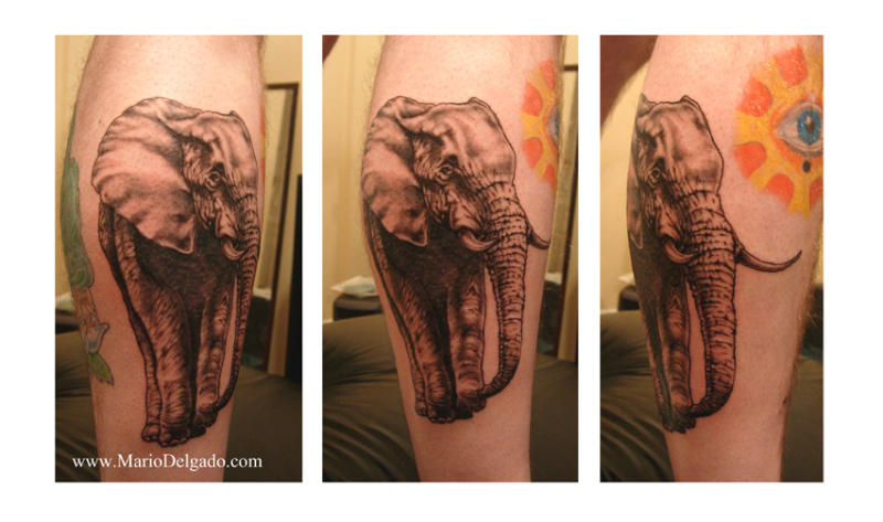 Elephant n eye tattoo design