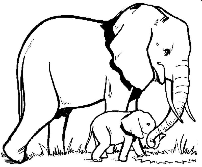 Elephant outline tattoo samples