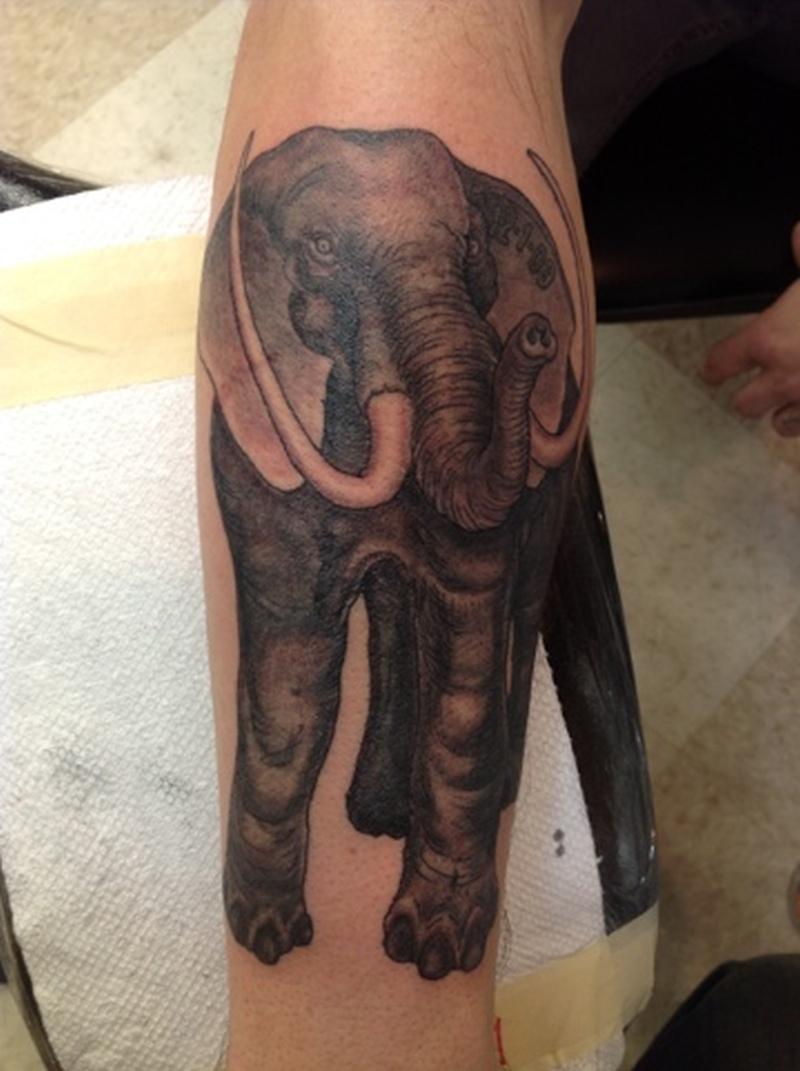 Elephant tattoo design on arm
