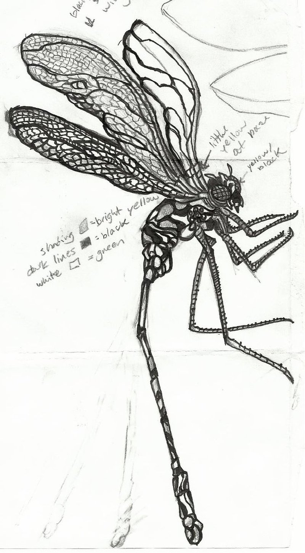 Fantastic dragonfly tattoo sample