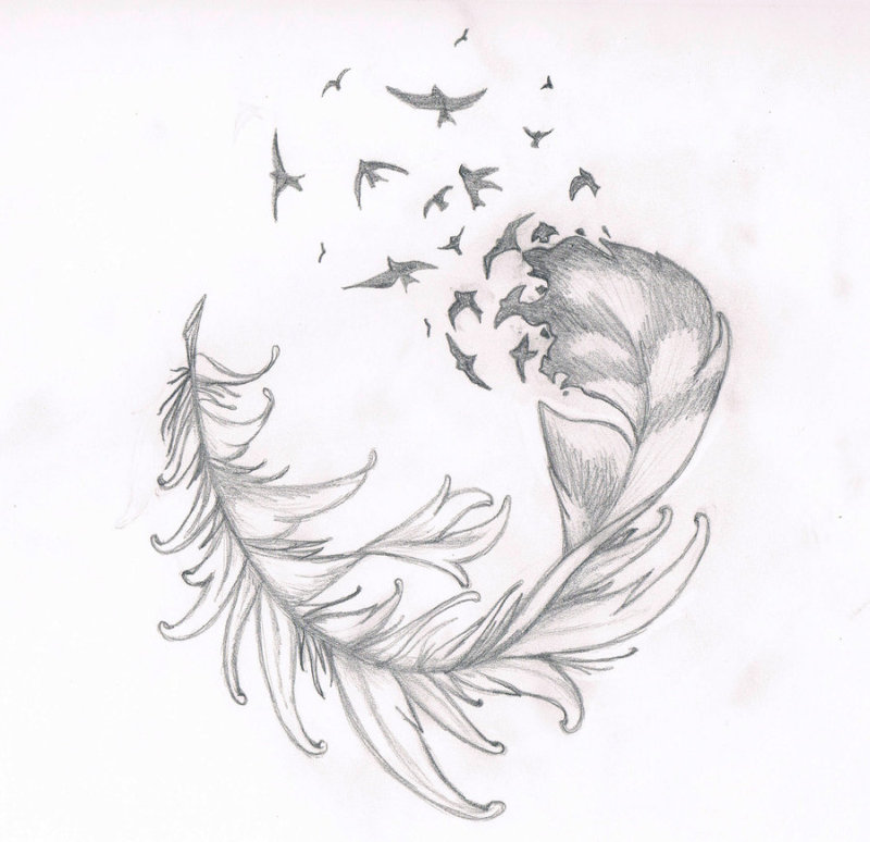 Feather n birds tattoo drawing