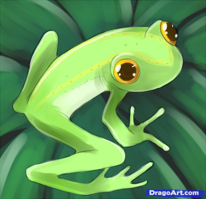 Frog tattoo art 2