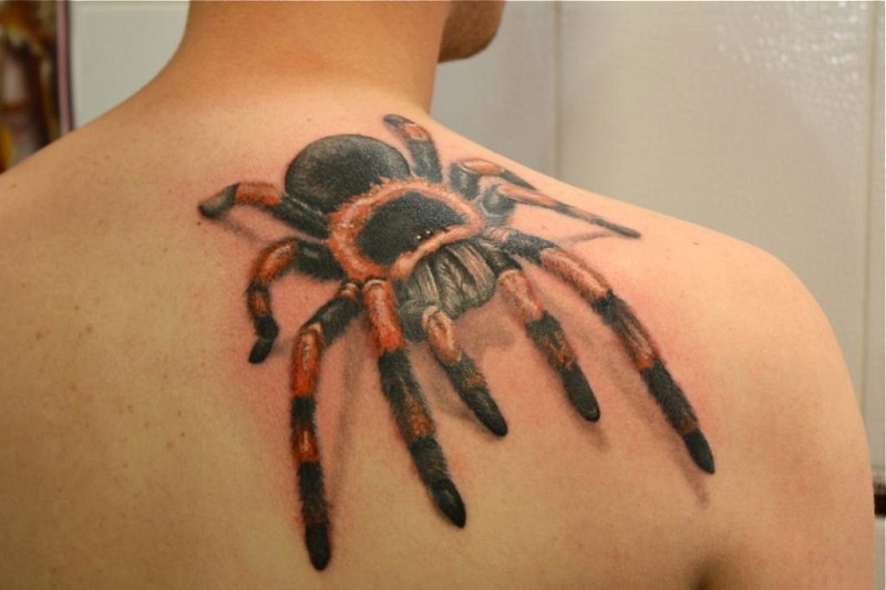 Great colorful tarantula on back tattoo