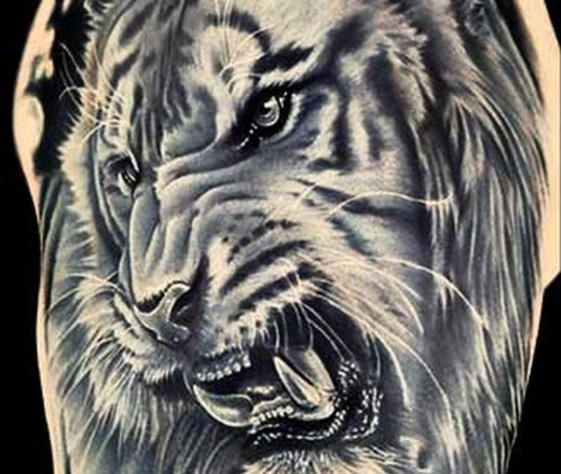 Grey ink angry asian tiger tattoo