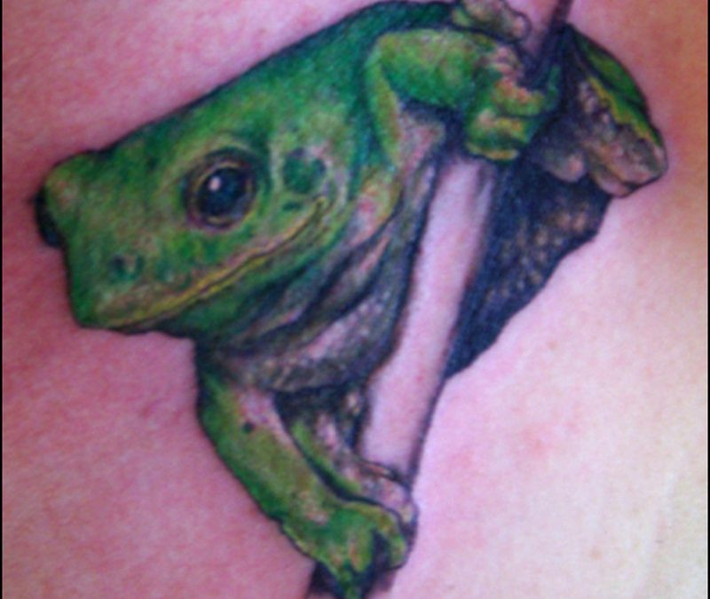 Hd frog tattoo design