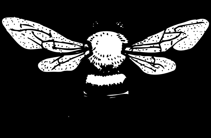 Honey bee tattoo design