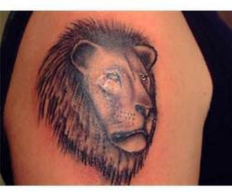 Lion head tattoo on biceps 2