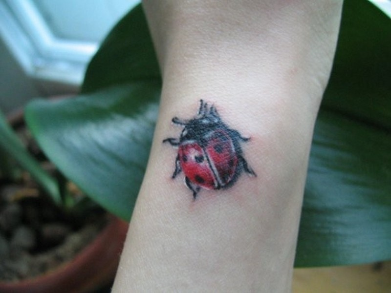 Little size lady bug tattoo