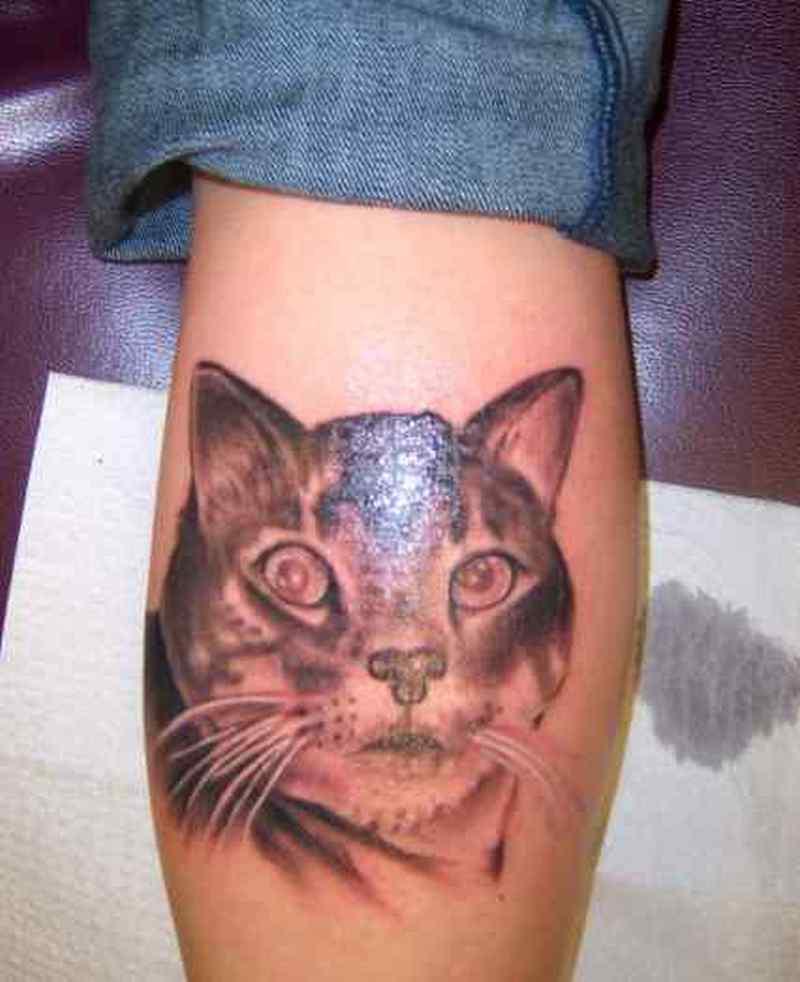 My cat on calf tattoo