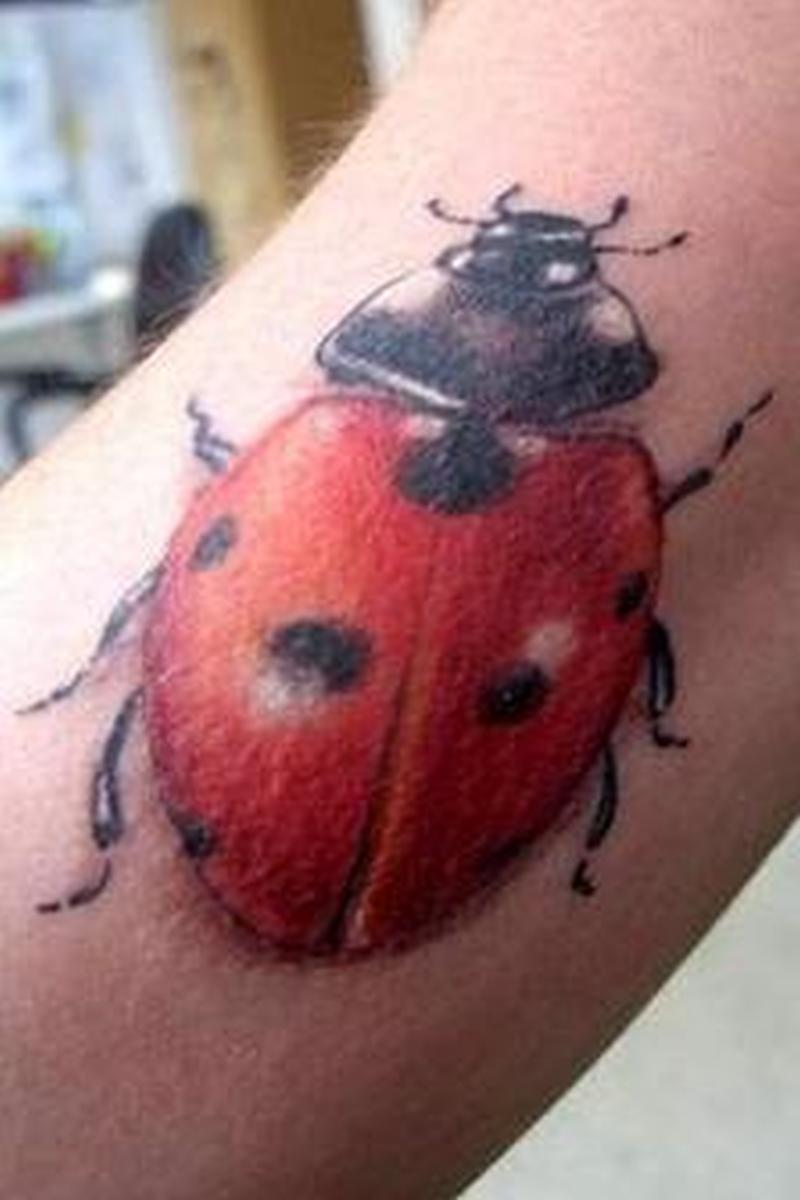Normal ladybug insect tattoo design