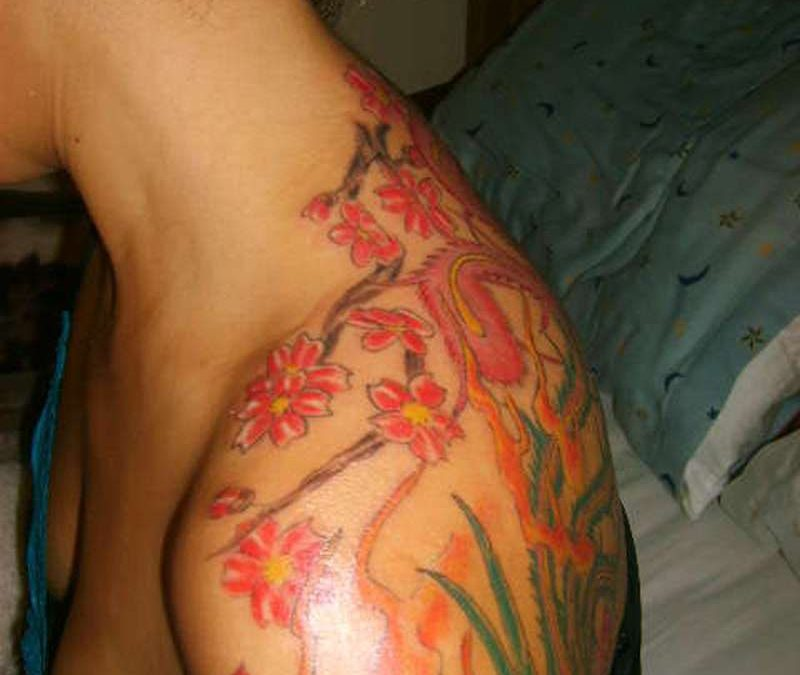 Phoenix tale n cherry blossoms tattoo on shoulder