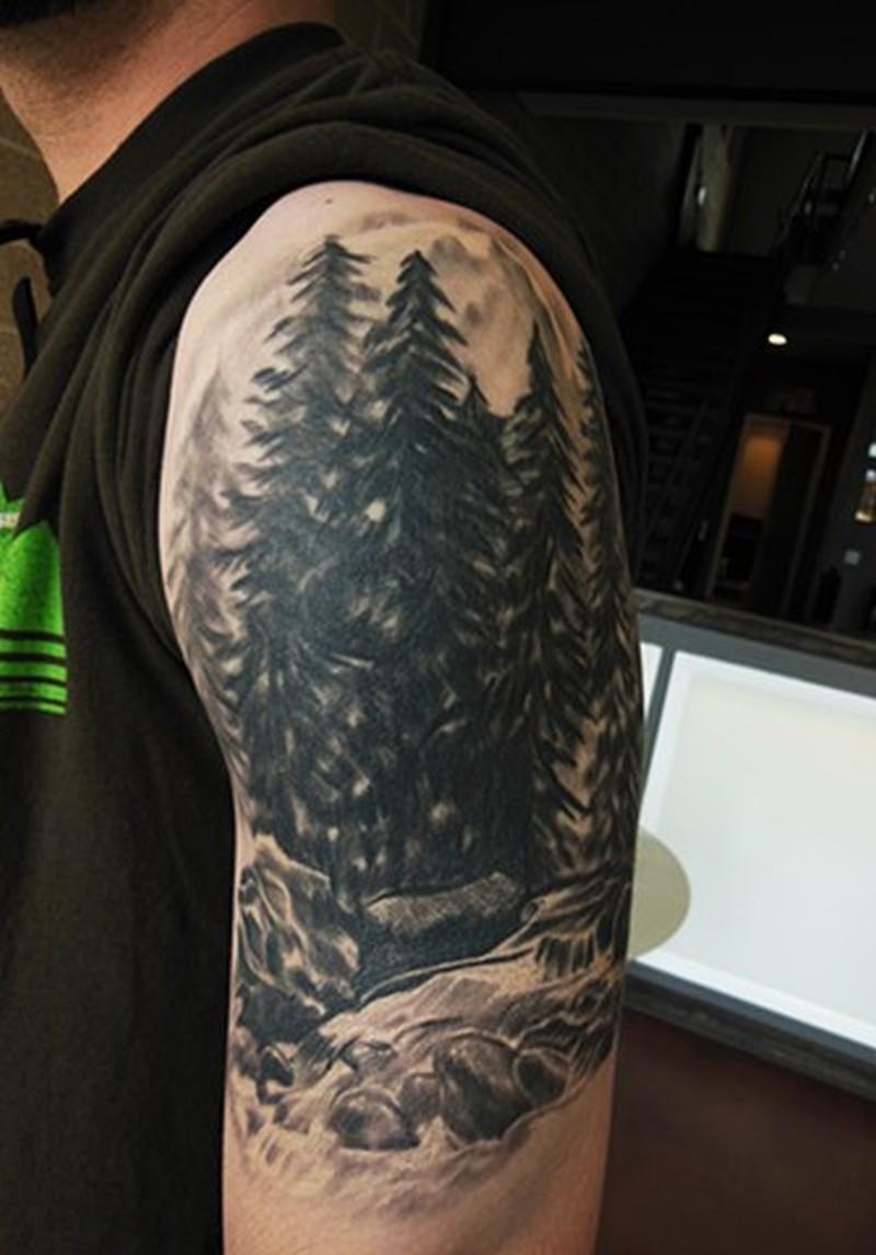 Pine tree tattoo - Tattoos Book - 65.000 Tattoos Designs