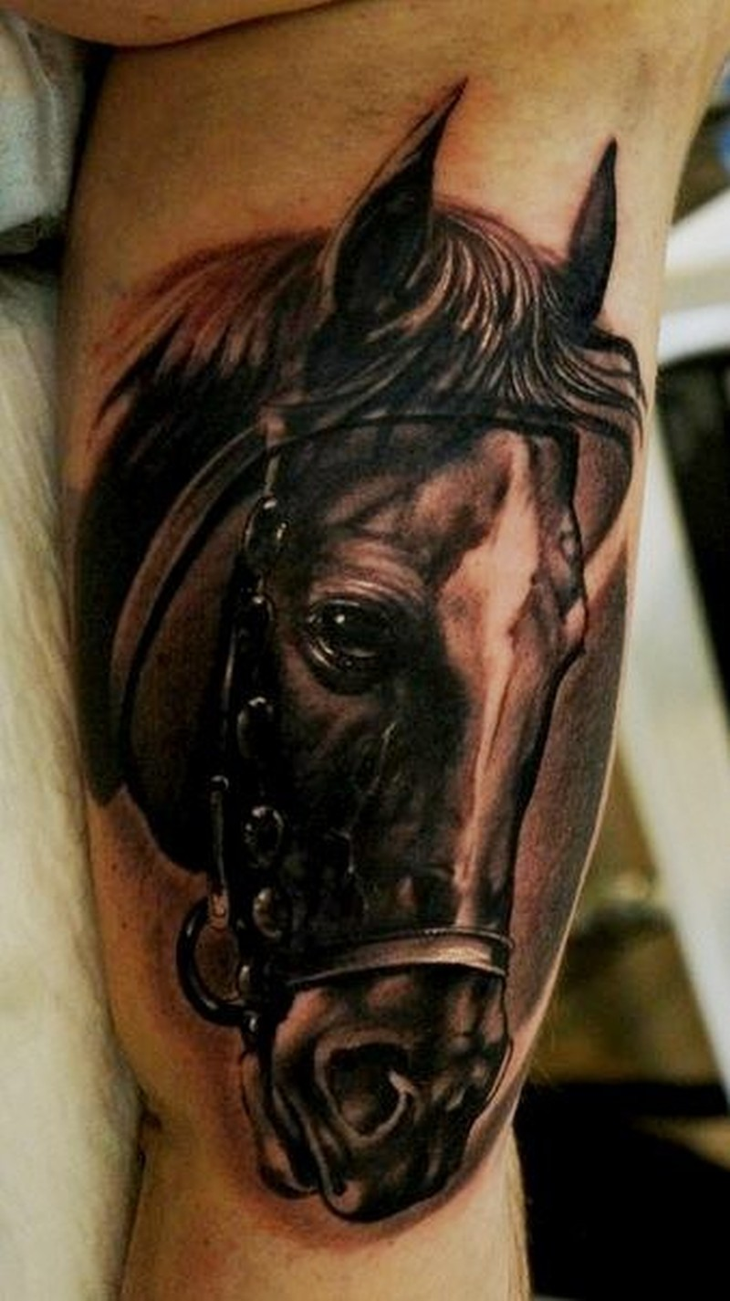 Realistic Horse Portrait Tattoo On Arm Tattoos Book 65 000 Tattoos Designs