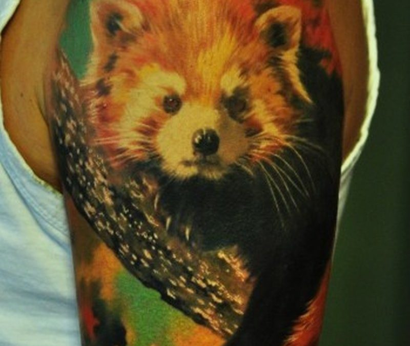 Realistic red panda tattoo on half sleeve