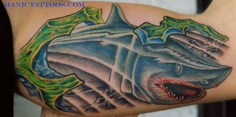 Shark aqua tattoo on arm