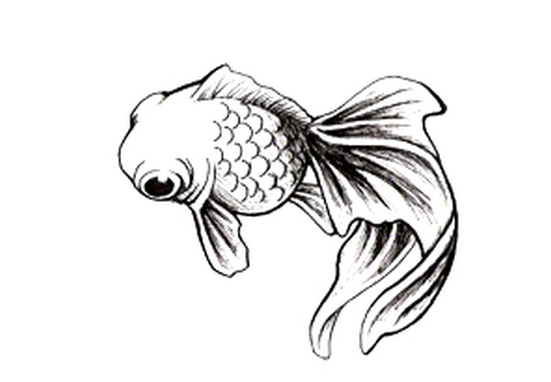 simple fish tattoo design tattoos book tattoos designs. Black Bedroom Furniture Sets. Home Design Ideas