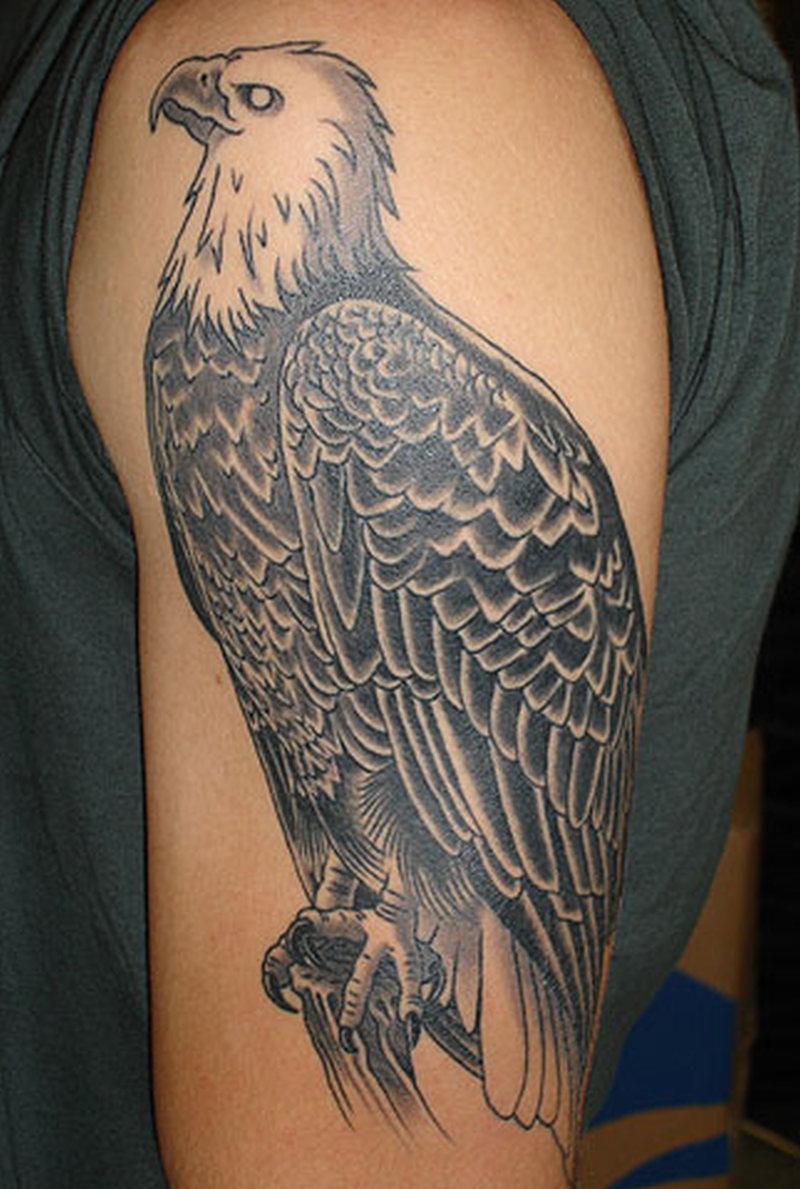 Sitting eagle tattoo design on upper arm