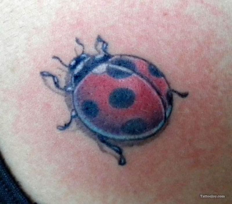 Small lady bug tattoo tattoos book tattoos designs for Ladybug heart tattoos