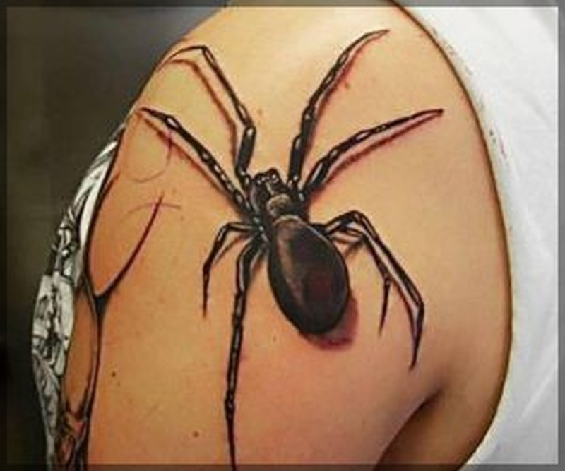 Spider insect tattoo