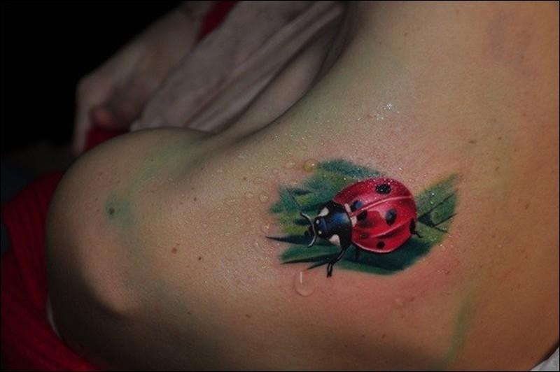 Super realistic ladybug on a leaf of grass tattoo on for Ladybug heart tattoos