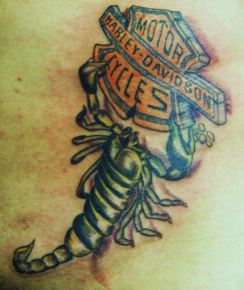 Tattoo harleydavidsonscorpiontattoo