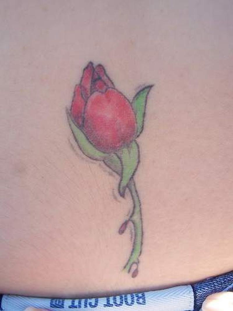 Tattoo roseofjerichotattoo