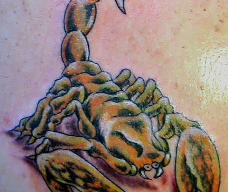 Tattoo scorpiontattoo001