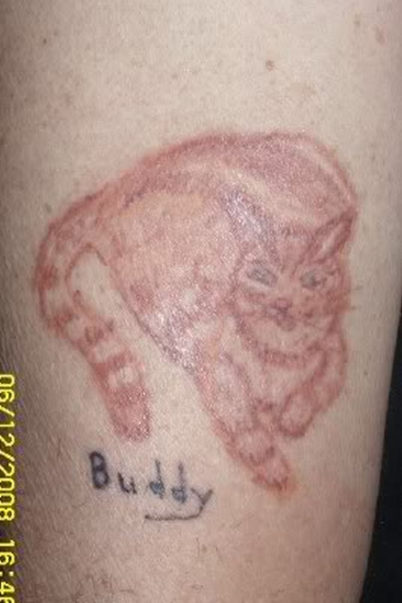 The cat tattoo
