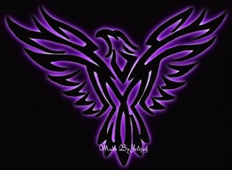 Tribal eagle tattoo graphic