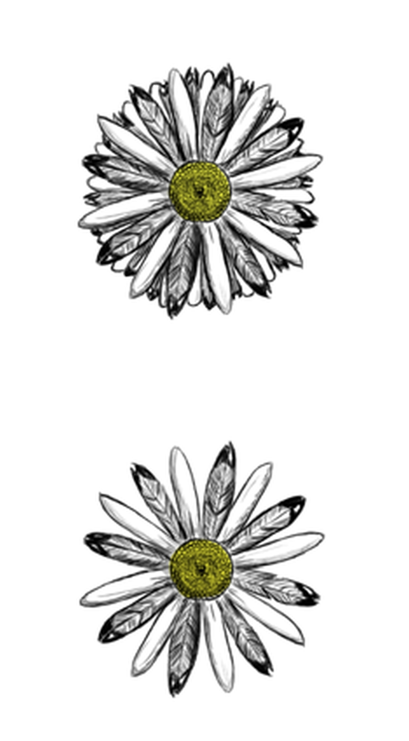 667bc8532 Two daisy flowers tattoo design - Tattoos Book - 65.000 Tattoos Designs