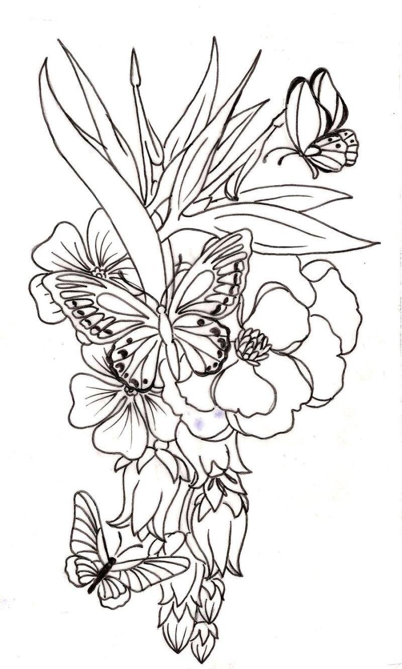 Without color flower n butterflies tattoo design