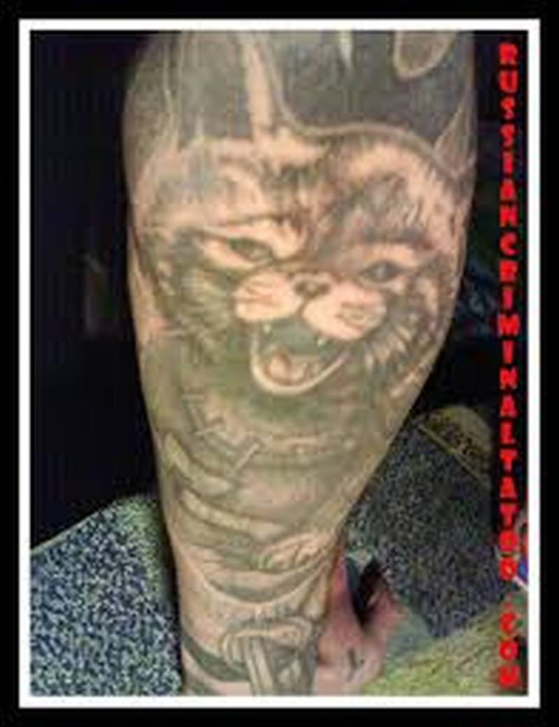 Wonderful cat tattoo picture