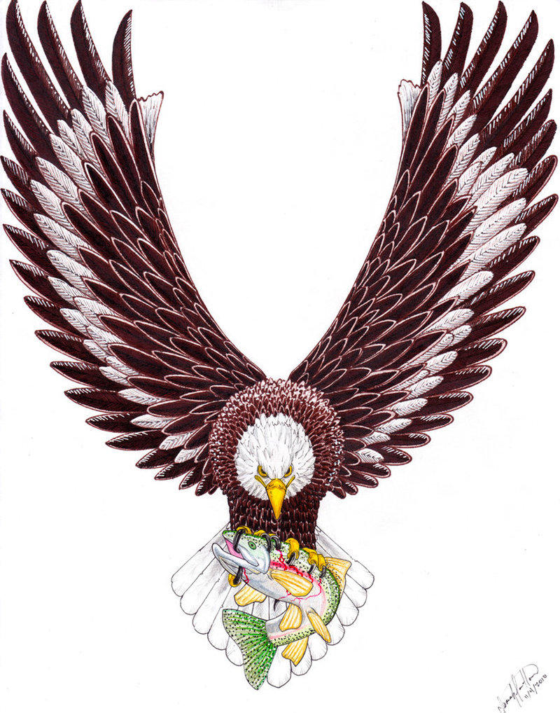 Wonderful eagle tattoo design