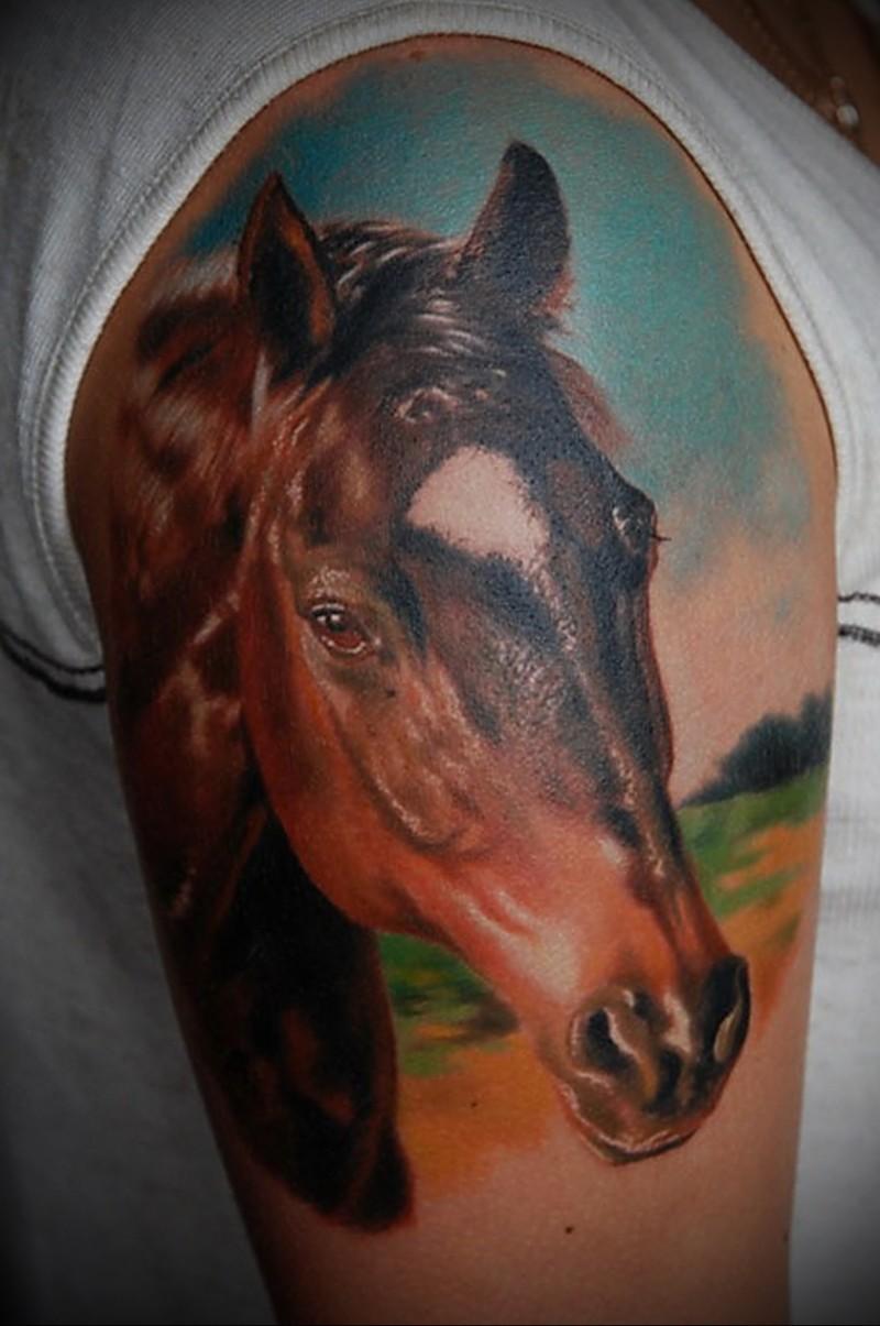 6a30b2923193b Wonderful horse head tattoo on half sleeve - Tattoos Book - 65.000 ...