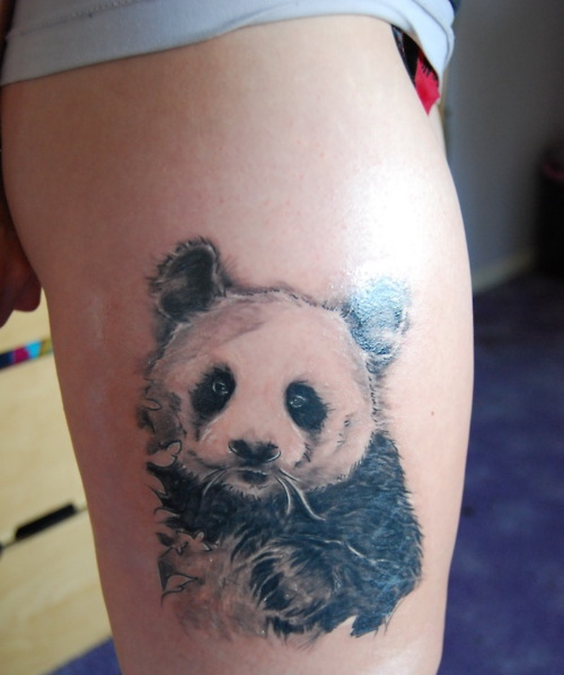 Wonderful panda bear tattoo design