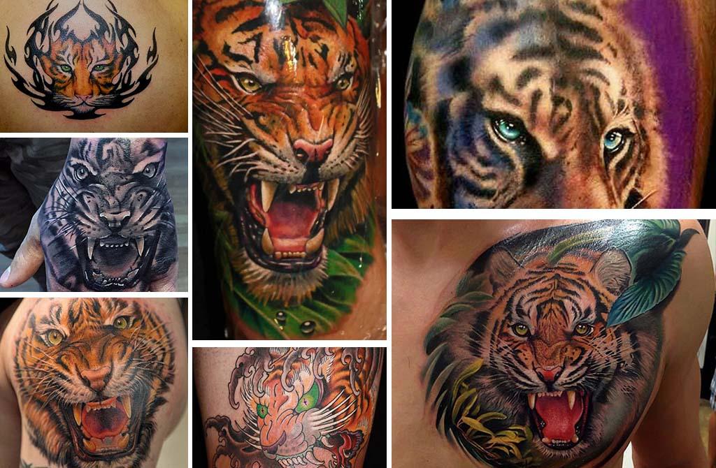 Best 25+ Tiger Tattoo ideas