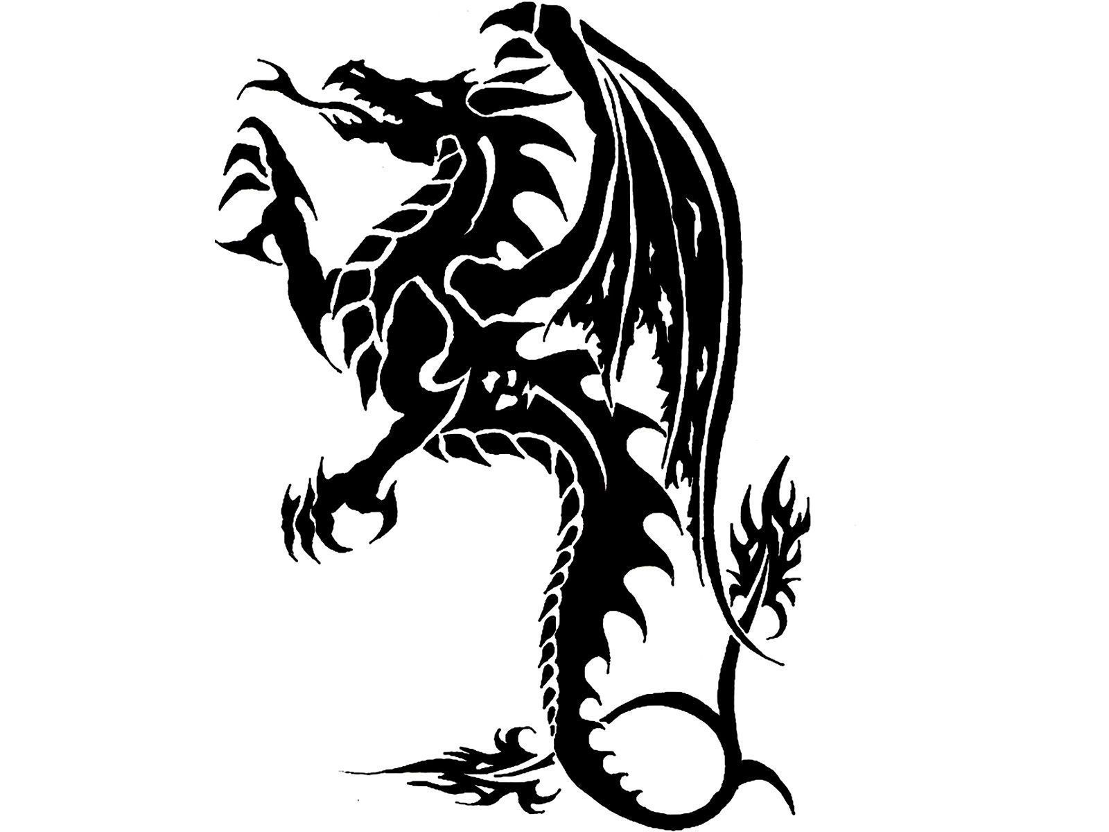 Dragon Tattoo Wallpapers Photos Backgrounds