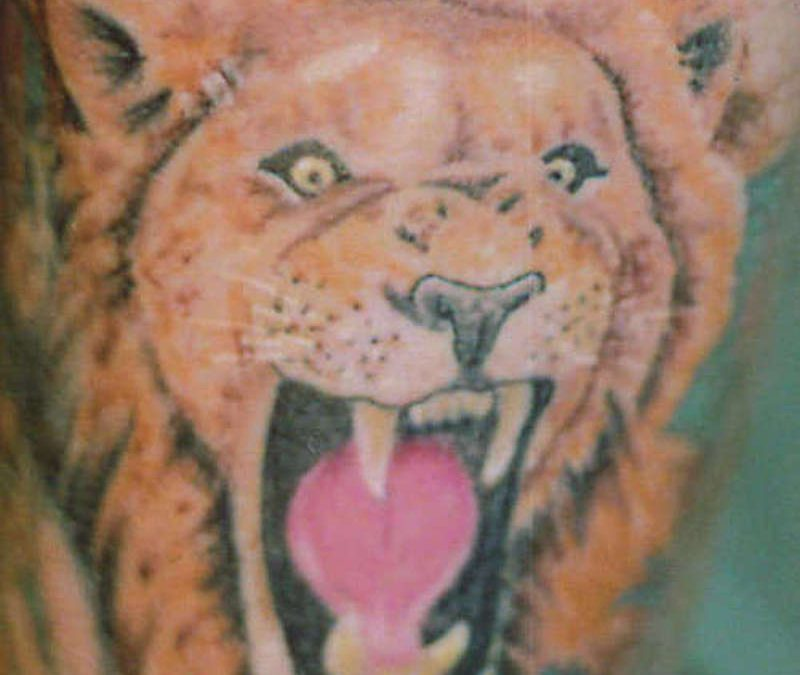 Lion And Tiger Tattoo