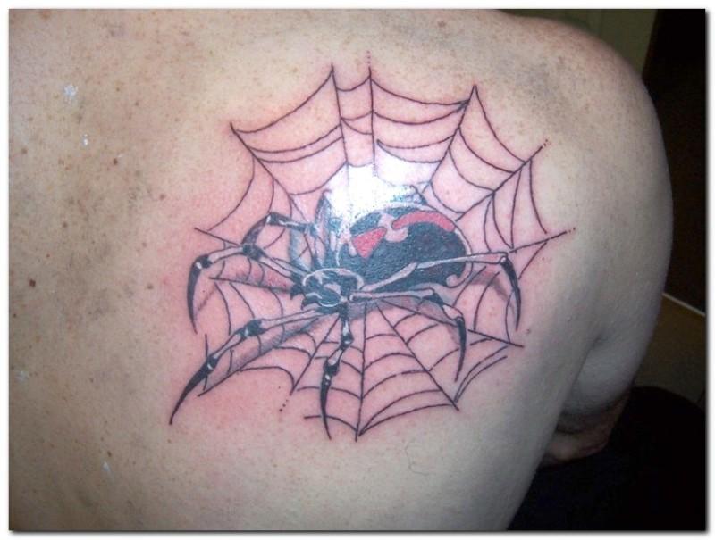 Spider Web Tattoos Designs