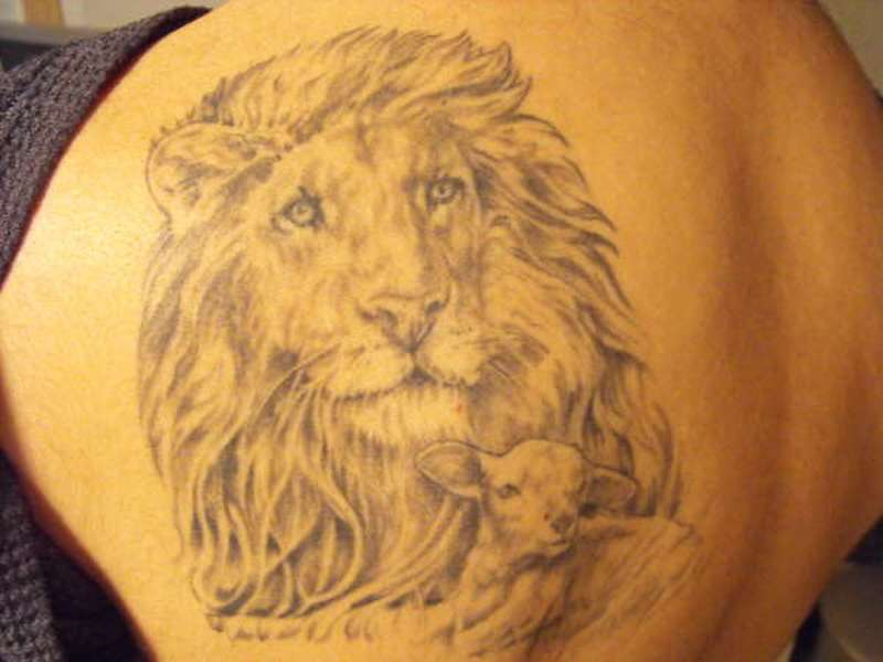 The Lion And The Lamb Tattoos