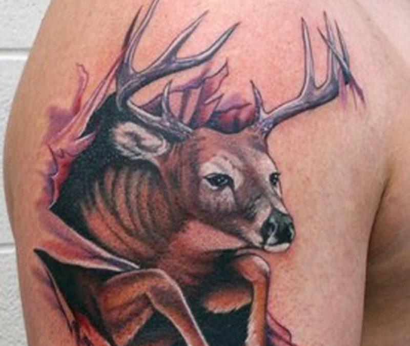 Best deer arm tattoo design