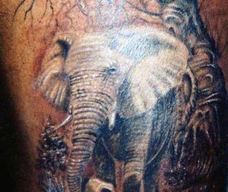 Best forest elephant tattoo design