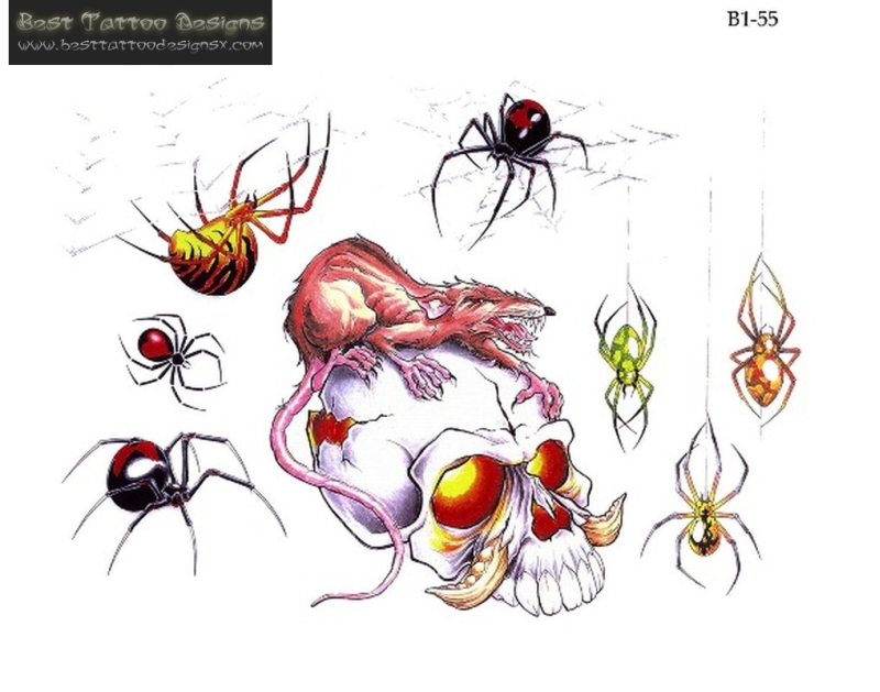Best spider insects tattoo designs