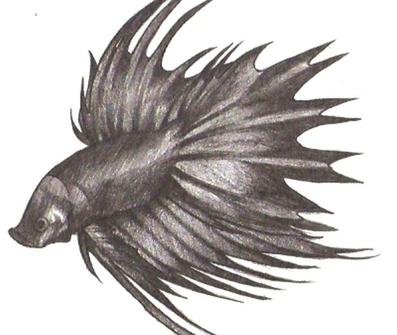 Betta fish tattoo sample 2