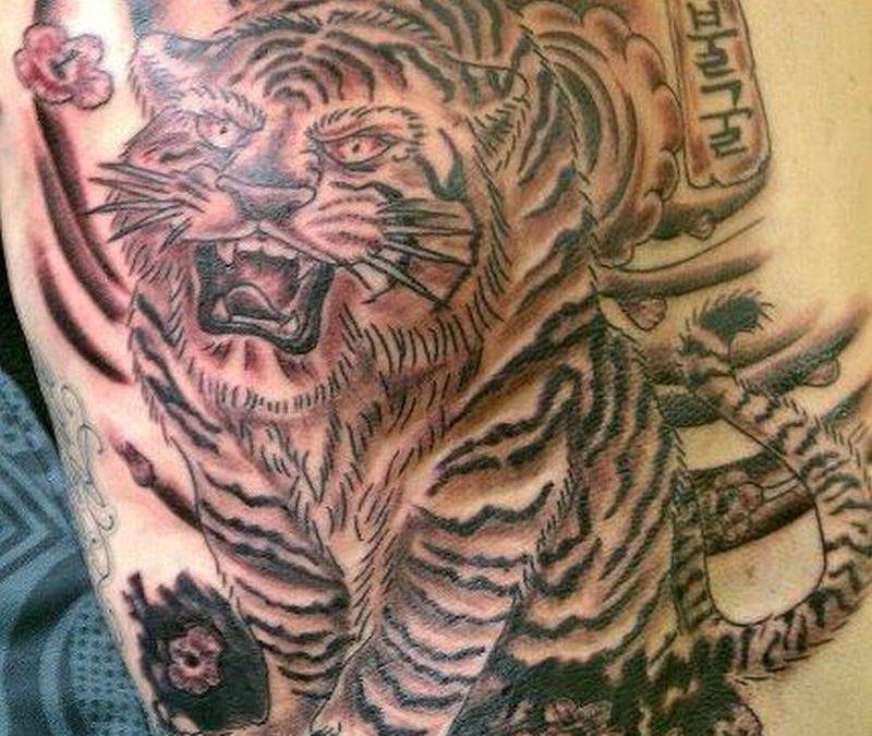 Big asian tiger tattoo on back