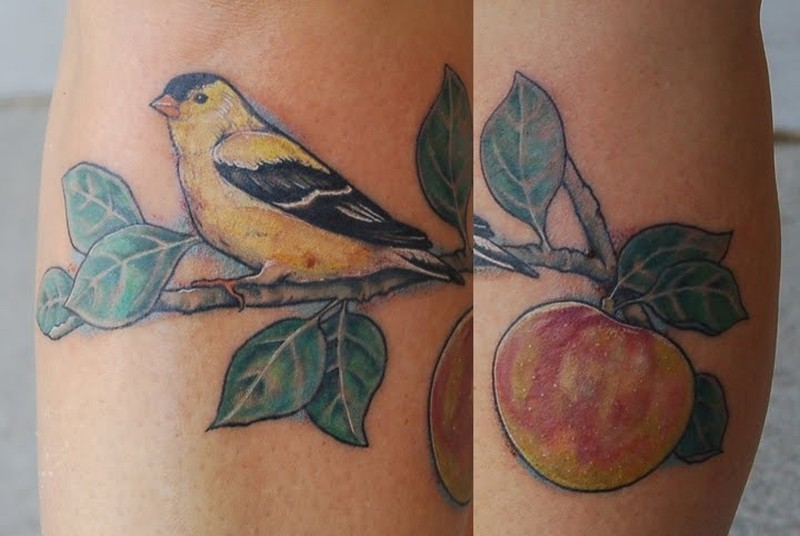 Bird sitting on apple branch tattoo design