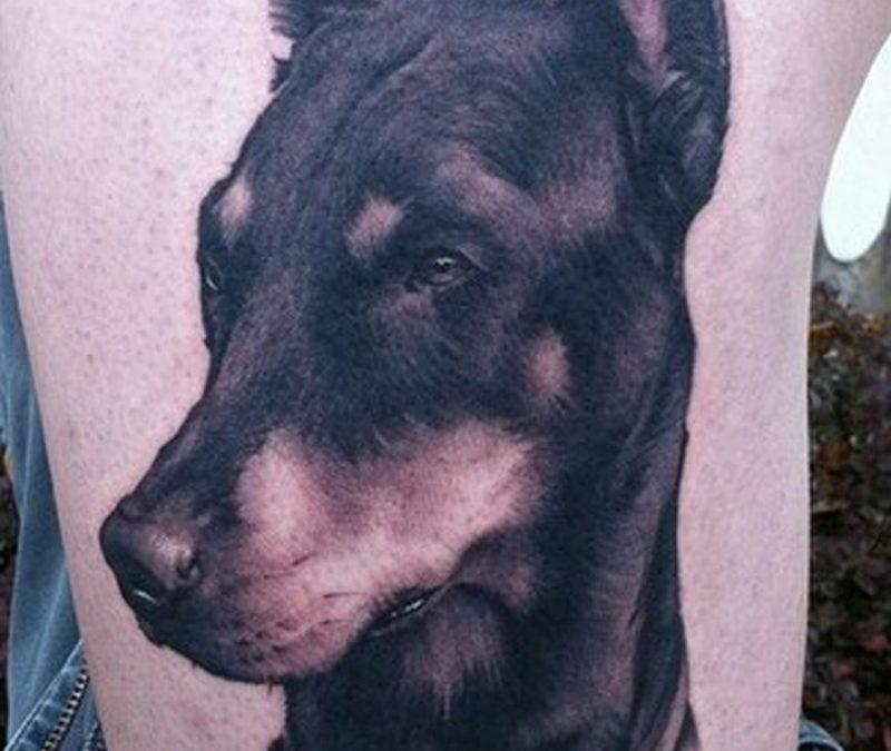 Black dog tattoo on ribs