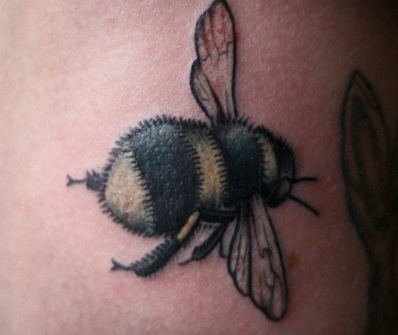 Brilliant bumblebee tattoo