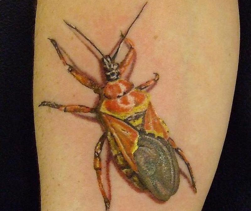 Bug insect tattoo